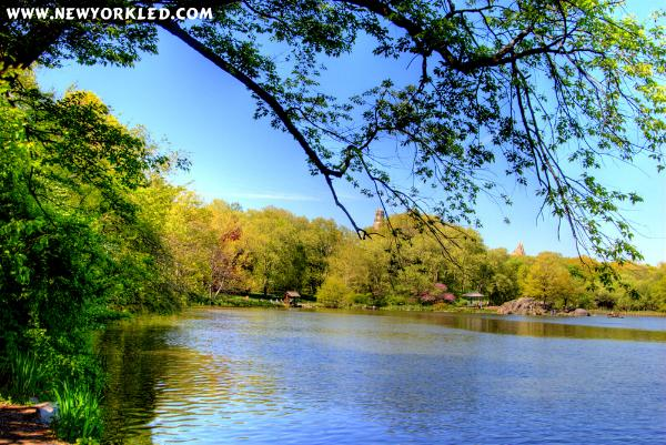 The Lake found within Central Park is the feature of this High Dynamic Range Image.