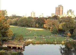 The Great Lawn Photo as taken from Belvedere Castle Outlook.