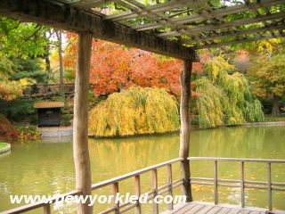 This photo was taken from within the pavillion which overlooks the Japanese Hill and Pond.