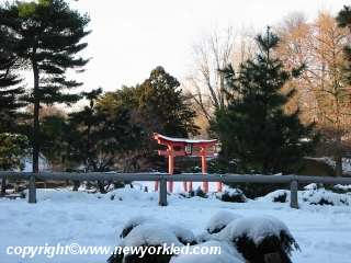 Snowy view of the torii at the Brooklyn Botanic Garden.