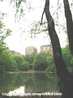 Scenic view of the Pool at Central Park.