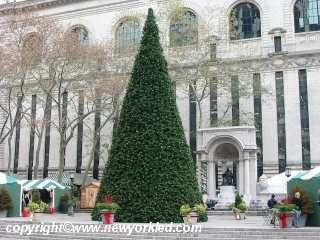 Photo of the Christmas Tree at Bryant Park.