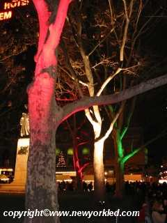 Appropriately lit trees just across the street from Lincoln Center.