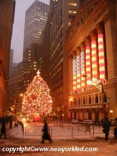 The tree at the Stock Exchange by Wall Street in NYC.