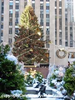 The 75 year old tree at Rockefeller Center.