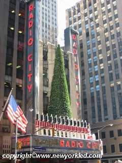 Radio City Music Hall in Manhattan.