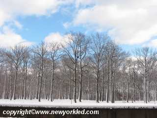 Pelham Bay Park covered with snow 1 day past Christmas.
