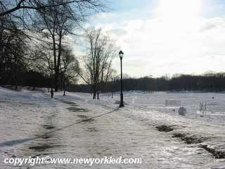 Photo of a path along the snow covered expanse of Prospect Park, Brooklyn.