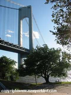 Trees line the waterfront at the foot of the Verrazano Bridge.