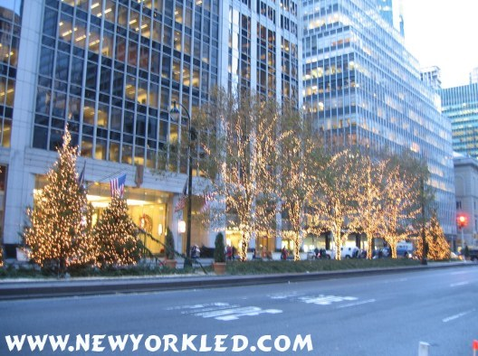 Lights adorn the trees along Park Avenue in Midtown Manhattan.