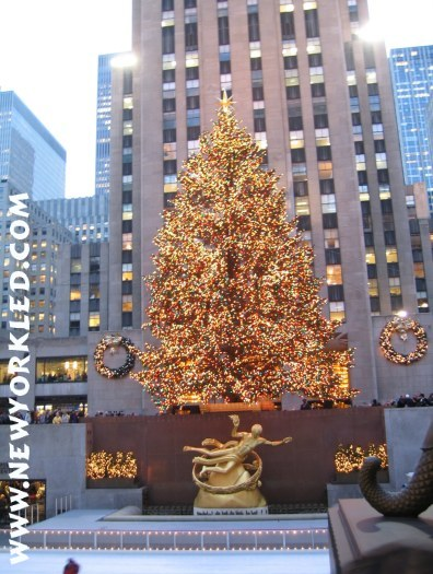 2003 Photo of the Christmas Tree at Rockefeller Center within NYC