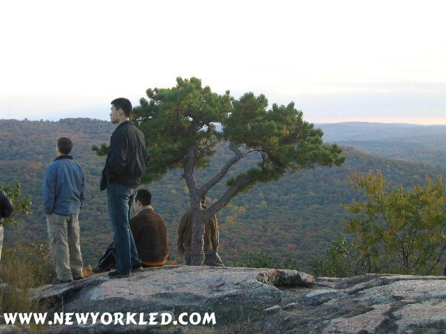 A rather peaceful shot of a group huddling near this unique looking tree high atop Bear Mountain!