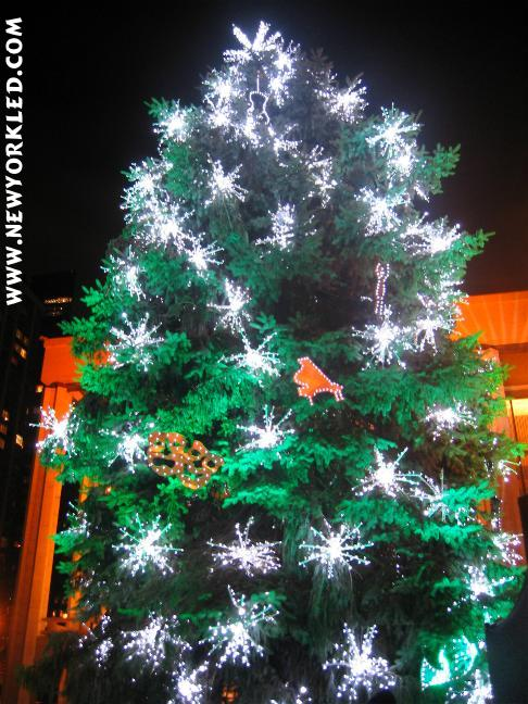 The Holiday/Christmas Tree at Lincoln Center brings a smile to everyone's face as it shines brightly into the night!