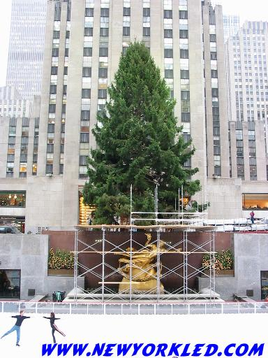 2002 photo of the Christmas Tree at Rockefeller Center