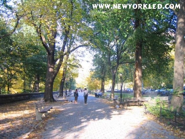 In this photo is shown the beauty of strolling along the sidewalk on Riverside Drive in NYC on a Fall Day.